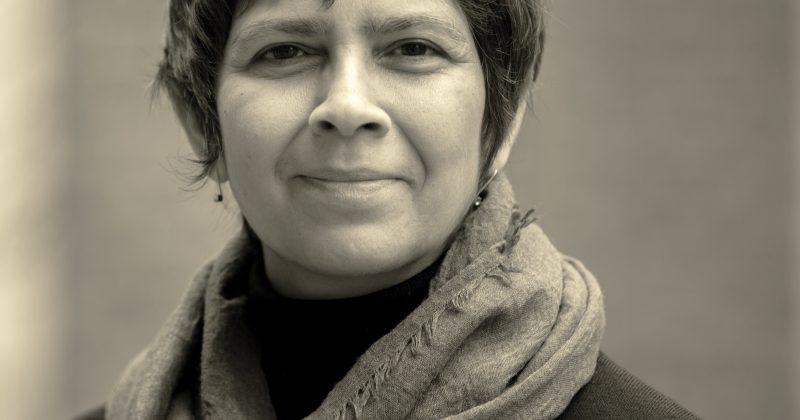 Meenu Tewari, Institute for the Arts and Humanities